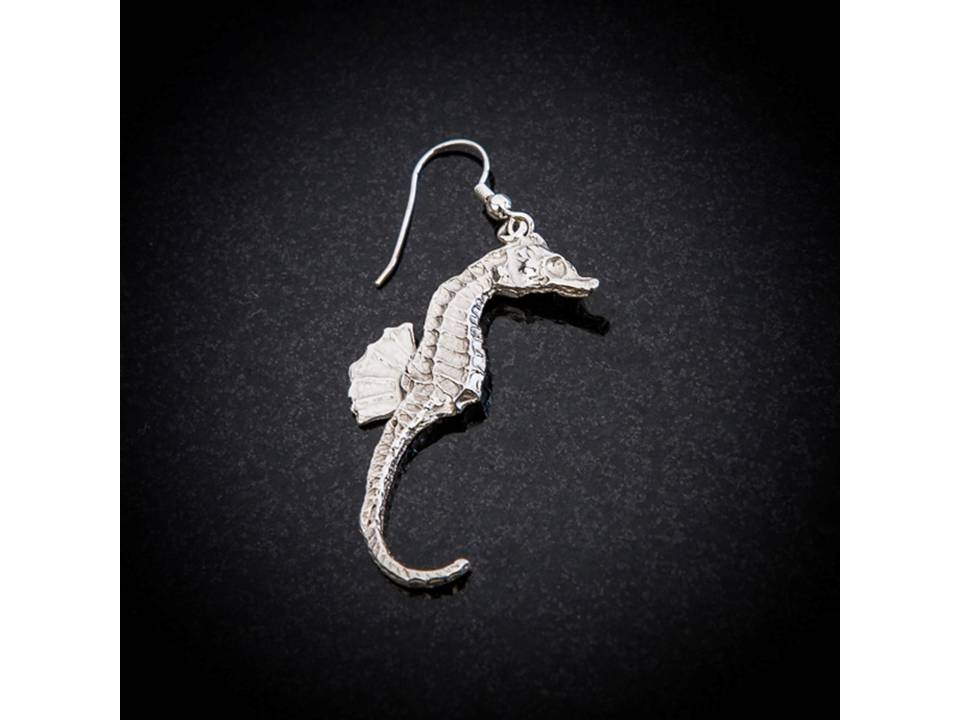 Seahorse earrings by Patricia Dudgeon Designs